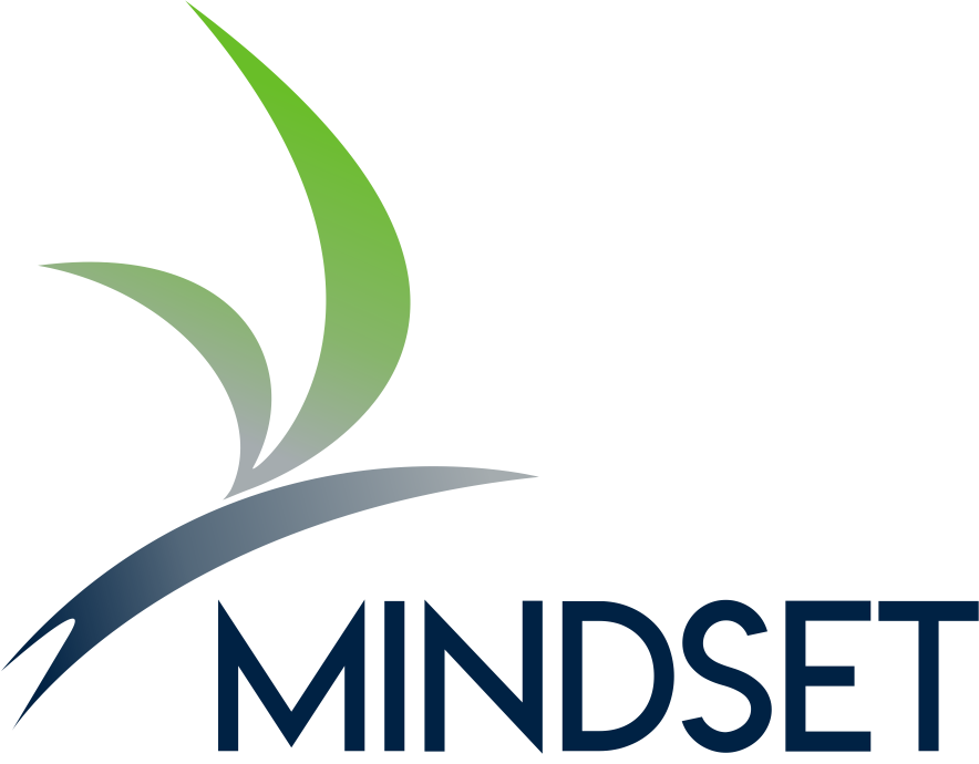 Mindset Gym and Physical Therapy: We Solve Your Pain